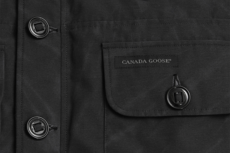 wings and horn x canada goose